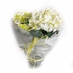Hortensia hvit